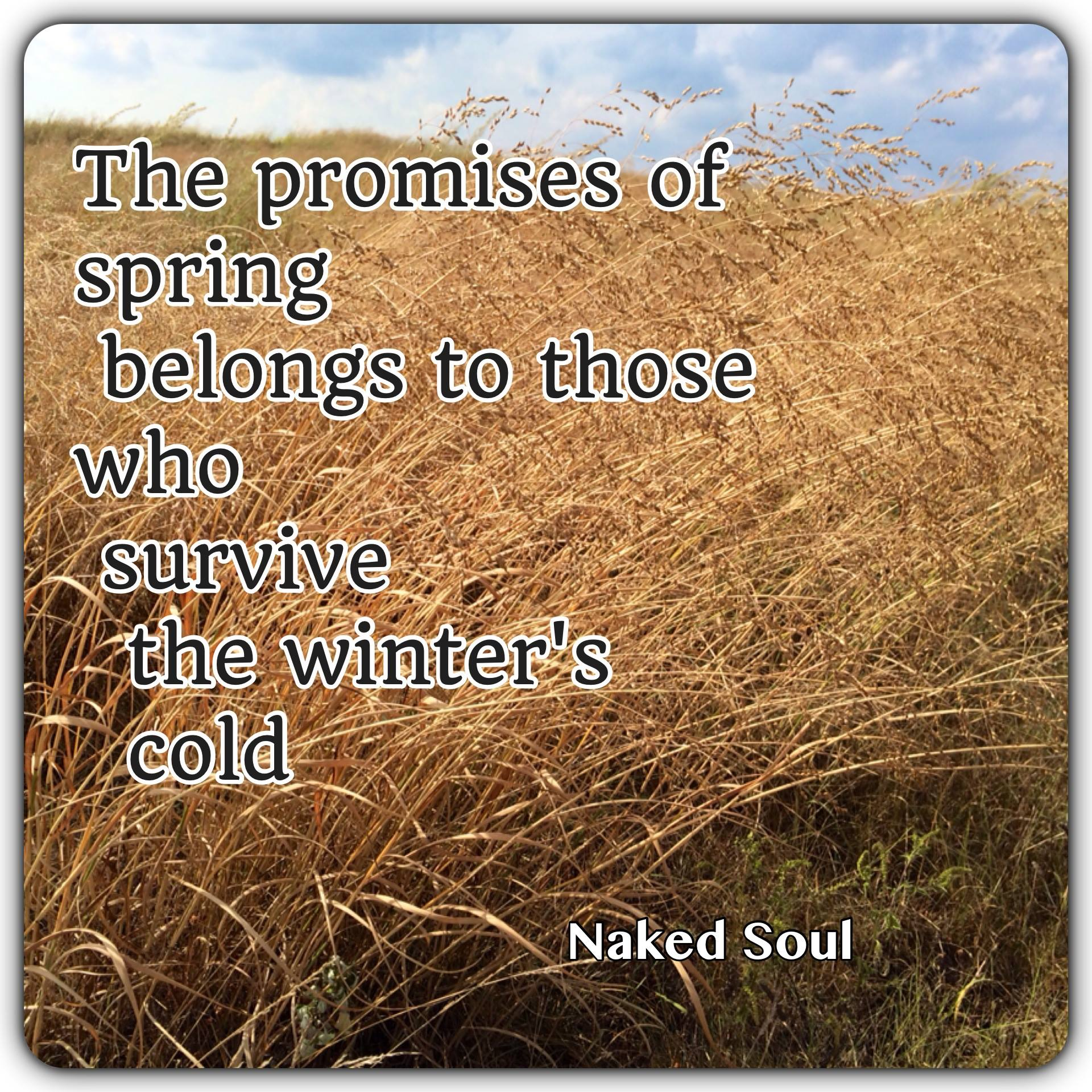 The promises of spring belongs to those who survive the winter's cold.