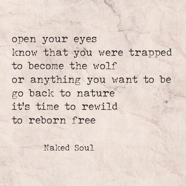 Salil Jha, author of The Naked Soul. Time to be wild and reborn free (naked soul poems)