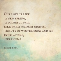 our love is like from book naked soul the erotic love poems