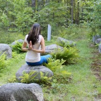 meditation in woods