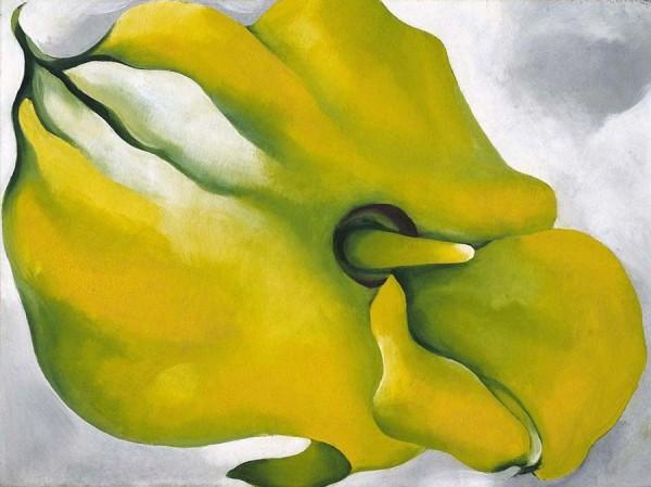 O Keefe's Yellow Calla
