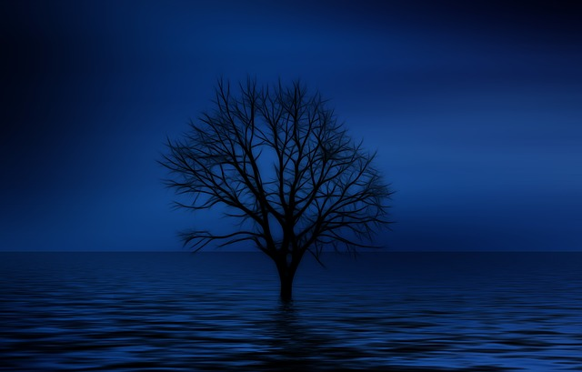 solitude writing