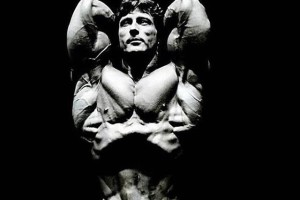 Frank Zane Aesthetic Body