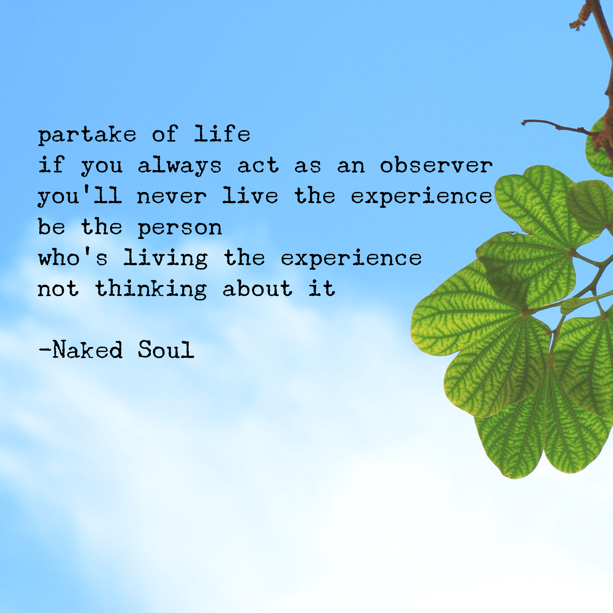 partake of life if you always act as an observer you'll never live the experience be the person who's living the experience not thinking about it